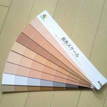 【プロ用】肌色診断用 肌色スケール